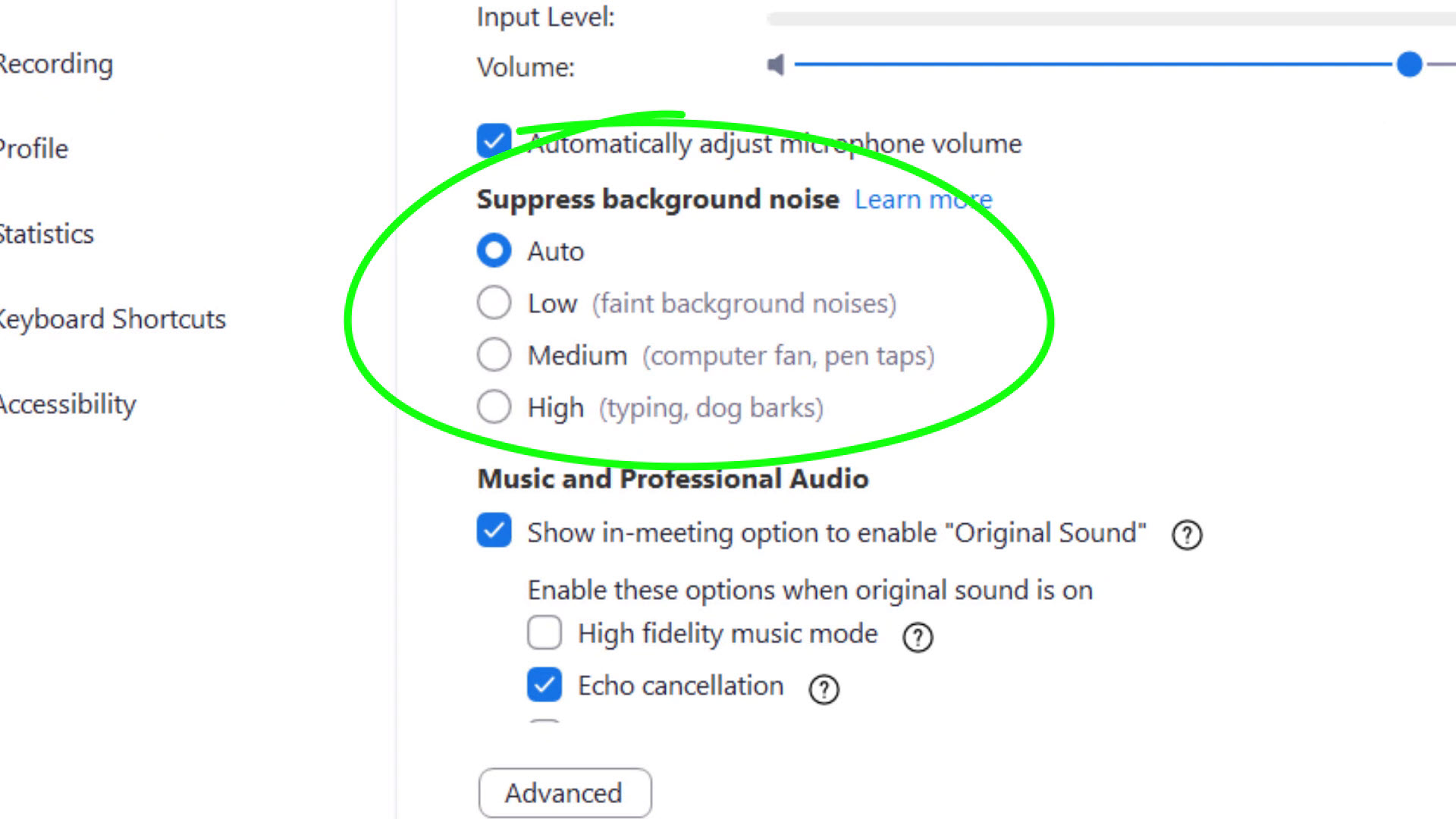Noise Cancellation settings in Zoom