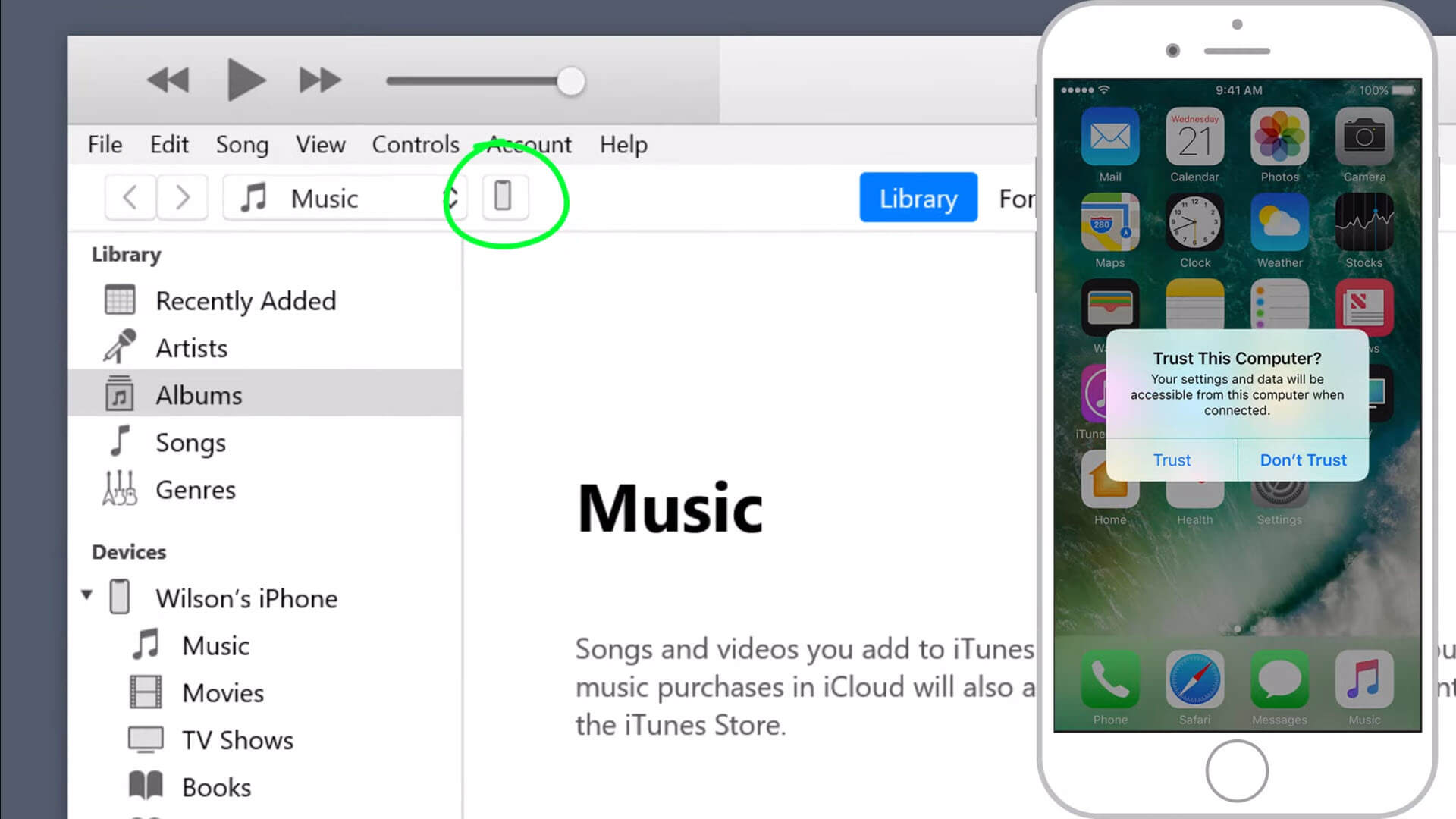 view iPhone in itunes